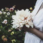 Lovelylife snittblomsodling dahlia