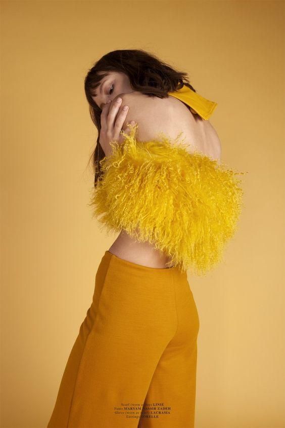 yellow.2111163