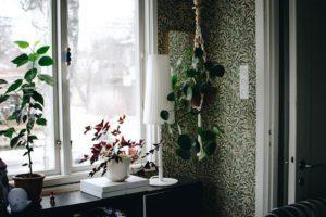 Tapetfrukost för Blomstermåla
