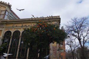Rosévin, poolhäng och bästisar i Provence