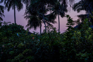 Kvällning i paradiset.