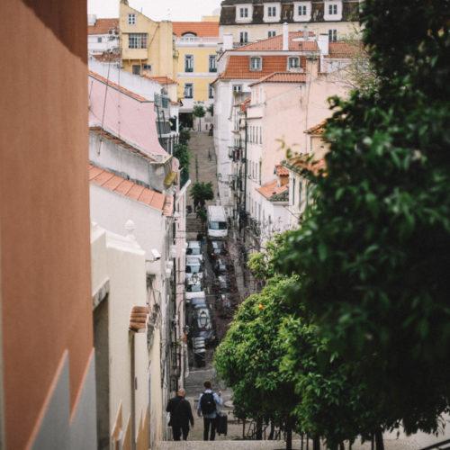 Finast i veckan; en resa till Lissabon, odla med barn och en tårta med mint och choklad – som jag aldrig kommer baka