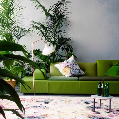 Årets färg enligt Pantone 2017: grön