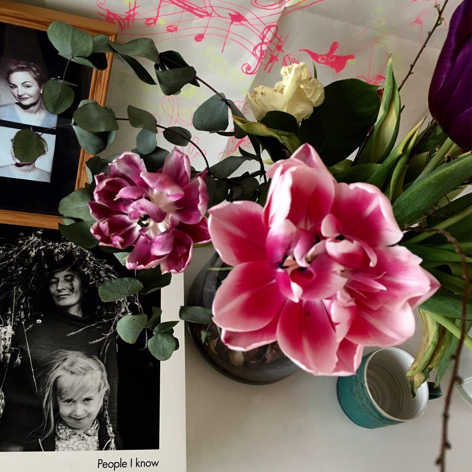 gamla blommor, gamla vänner och nya projekt