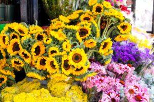 Vintagebutiker, glass och blommor i Williamsburg