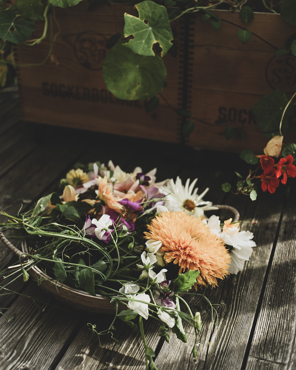 Lovely life blomsterodling