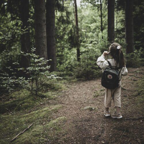 Hemester Tips – Ge er ut i skogen