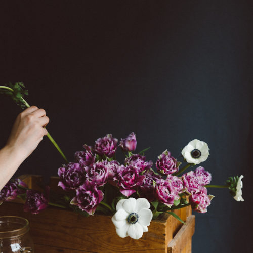 Tulips, Anemones and Thistles