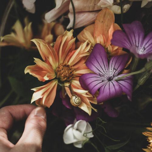 Sista blomsterskörden