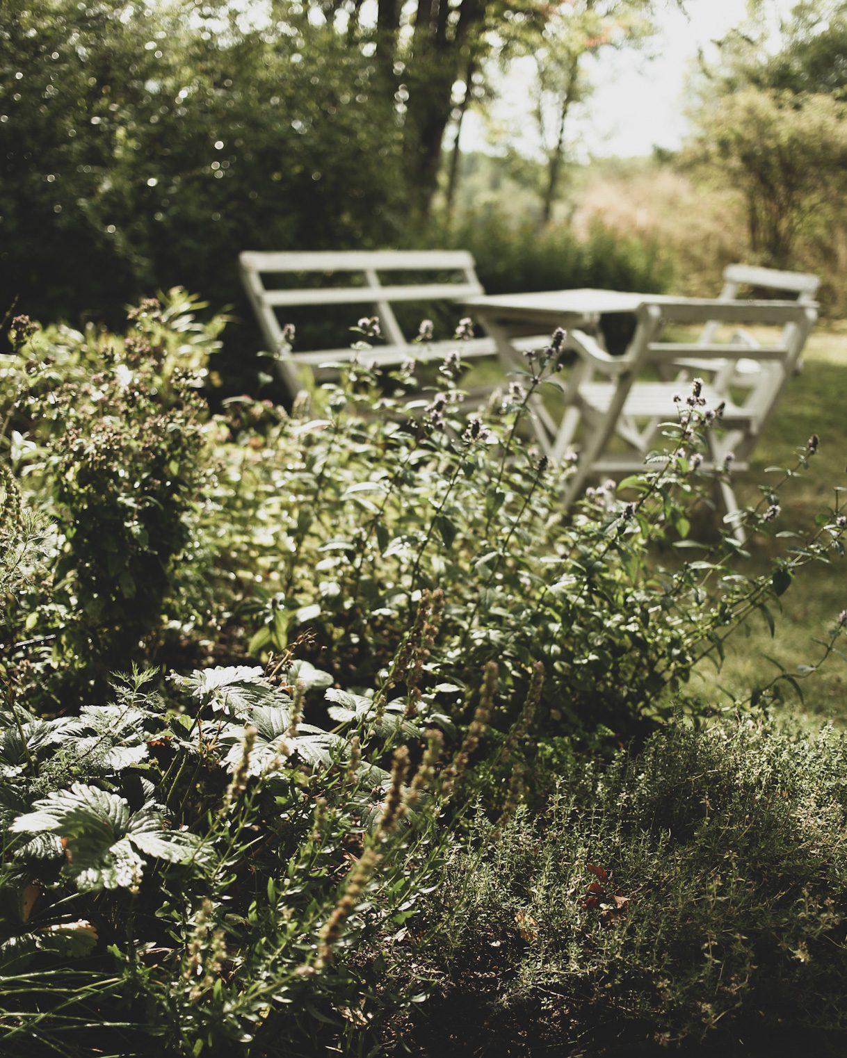Lovely life södermanland torpträdgård