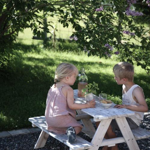 Picknick i trädgården