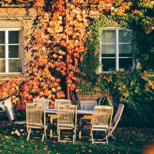 Hösten på Kungsholmen och Vintagefabriken flyttar