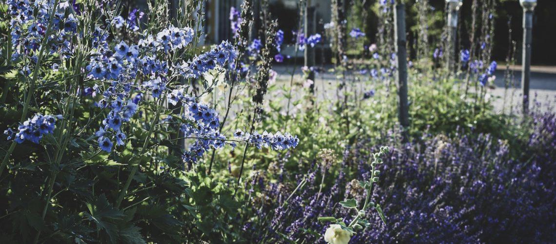 Lovely life julita gård