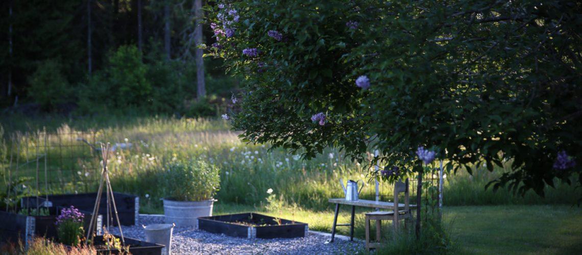 viktoria.holmgren.lovely.life.tradgardsland