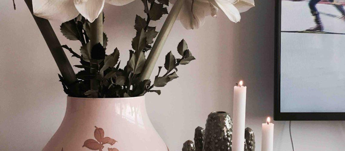 amaryllis.vita.kaktus.candle