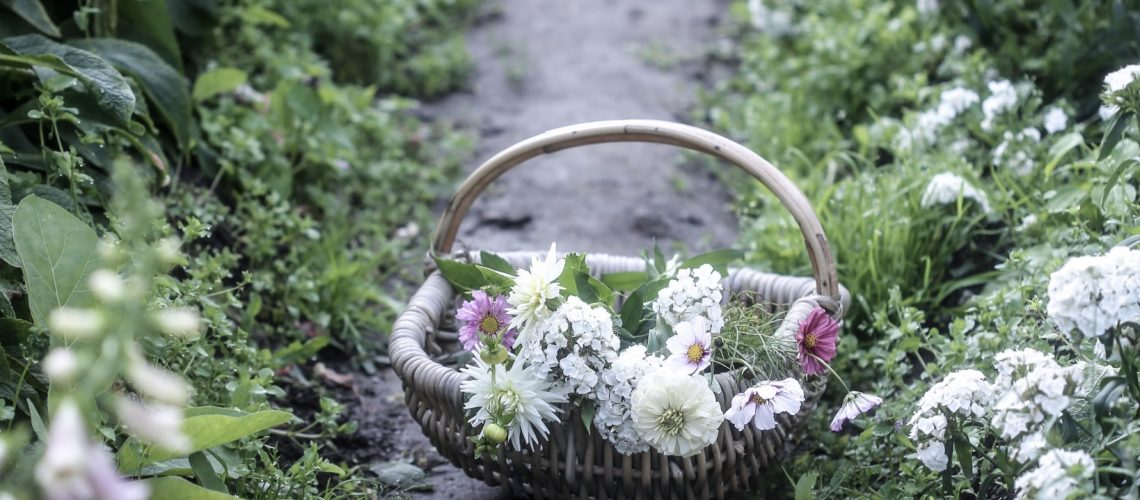 anna kubel blommor