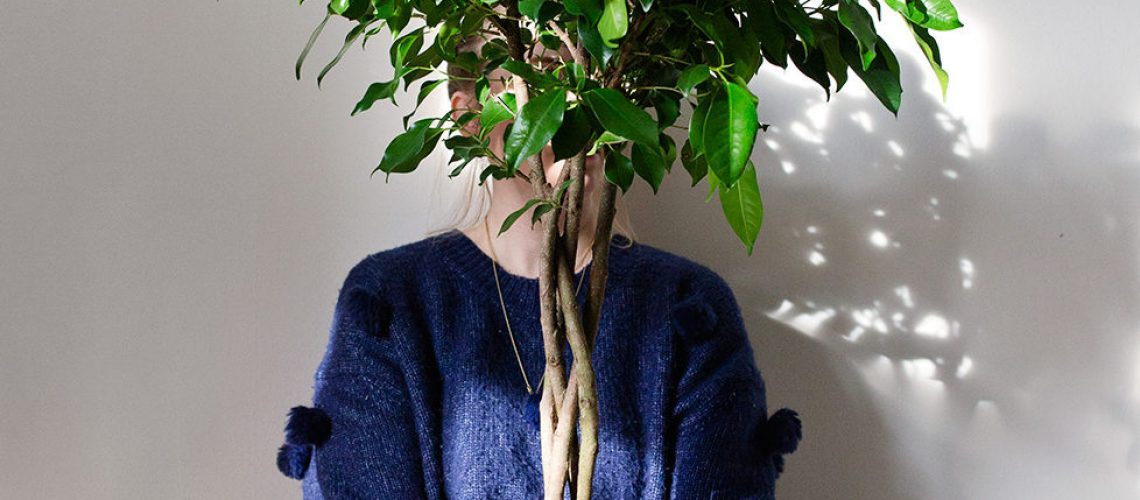 plantering_0033