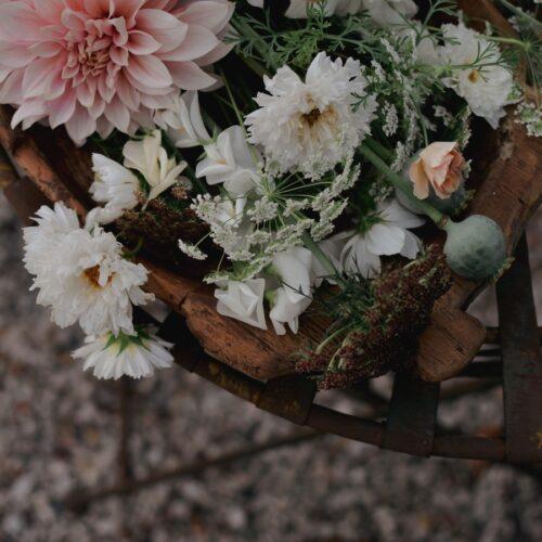 I mina blomlådor