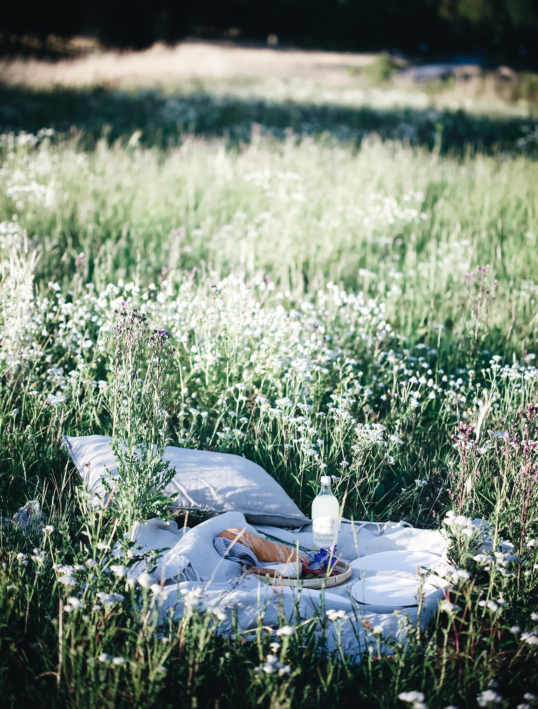 Sommarens härligaste picknick