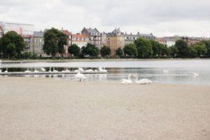Finaste kyrkogården, frasigt wienerbröd och ett karamelleri i Köpenhamn.