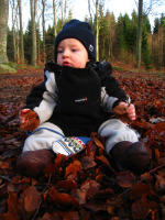 Jack i höstlöven 2009