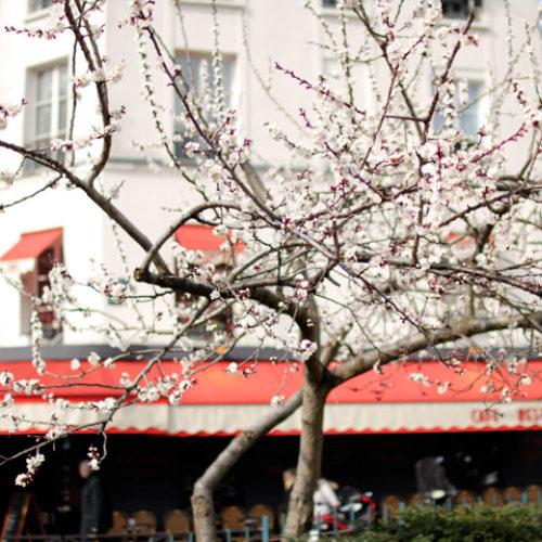 10 saker du måste göra i Paris