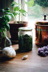 Pesto på gräslök och basilika