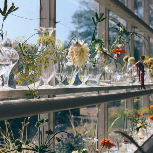 Inspirationsdag på Rosendals trädgård