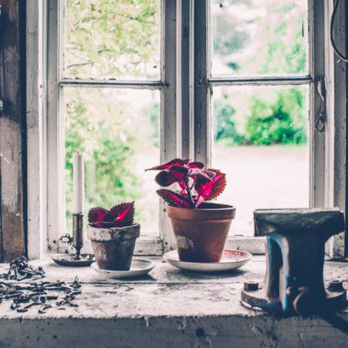tre snabba om blommorna
