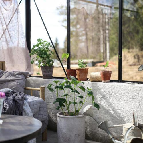 Läget i växthuset