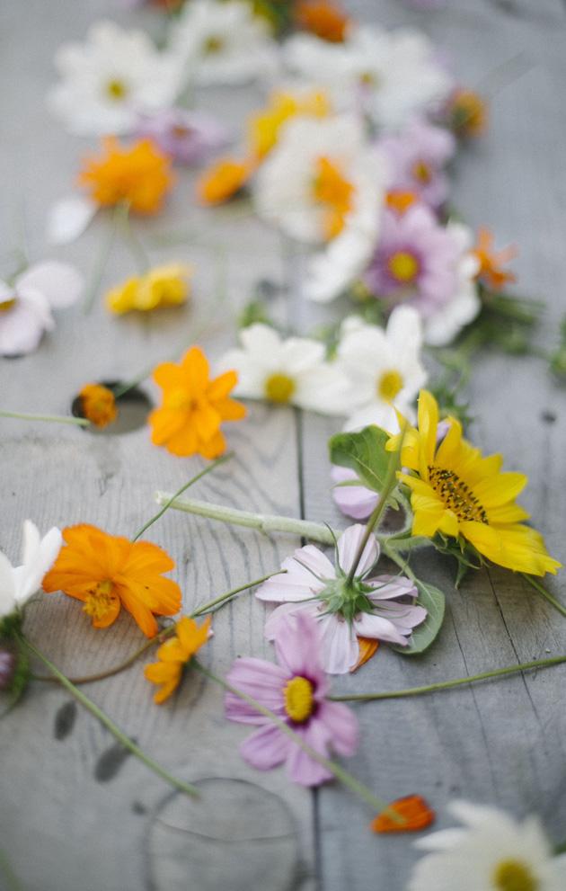 confetti flower petals