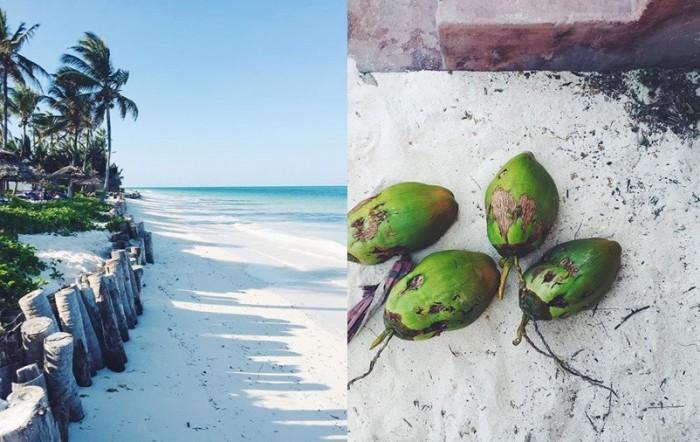 Zanzibar-20Kvadrat-700x442
