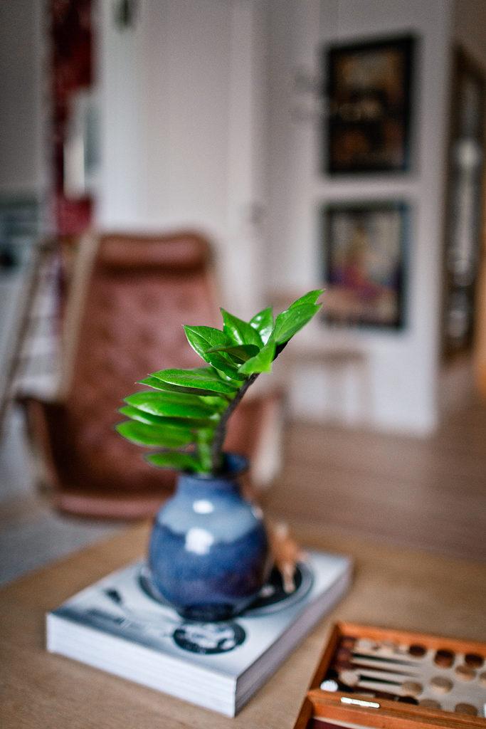 Hemma hos Anna Lidman – Foto Isabelle Pedersen