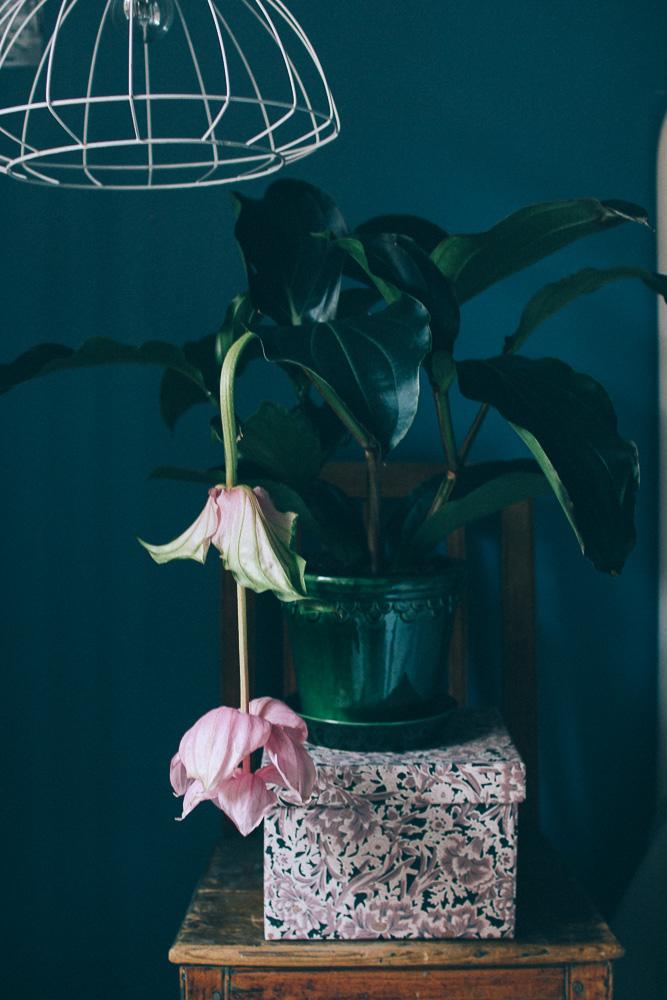 Bergs potter kruka i gront med rosenskarm
