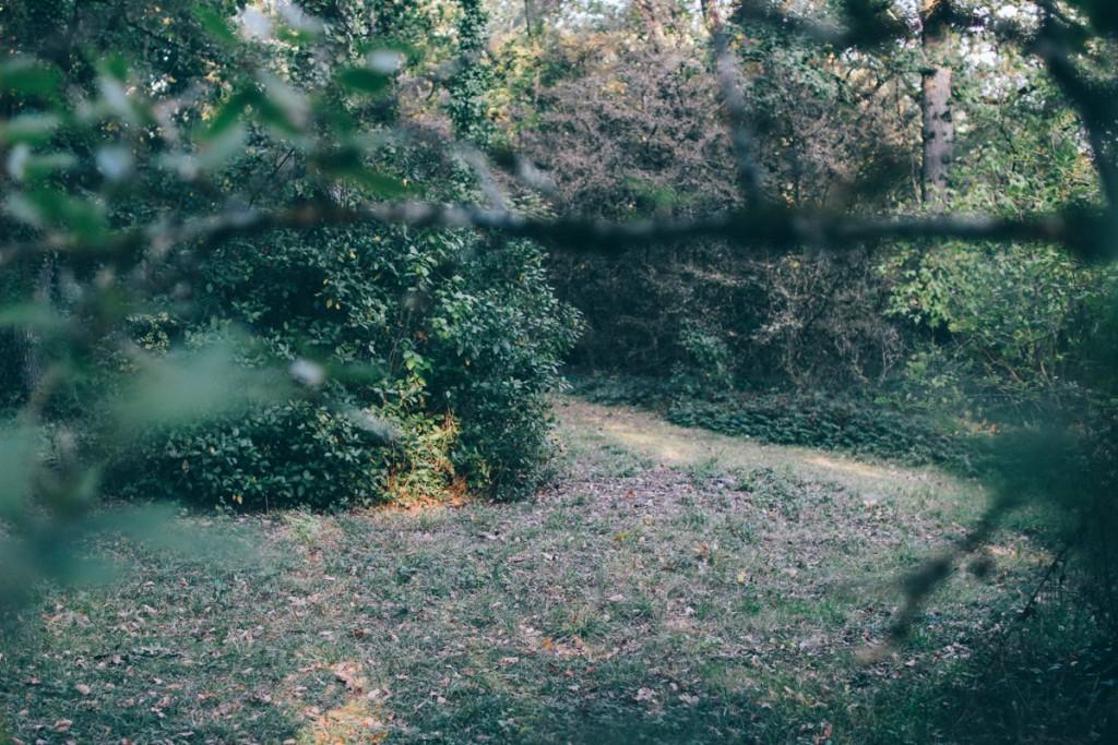 chateau de monbrison france-46