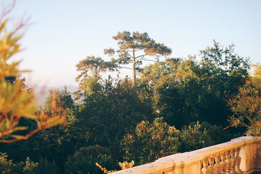 chateau de monbrison morgon-3