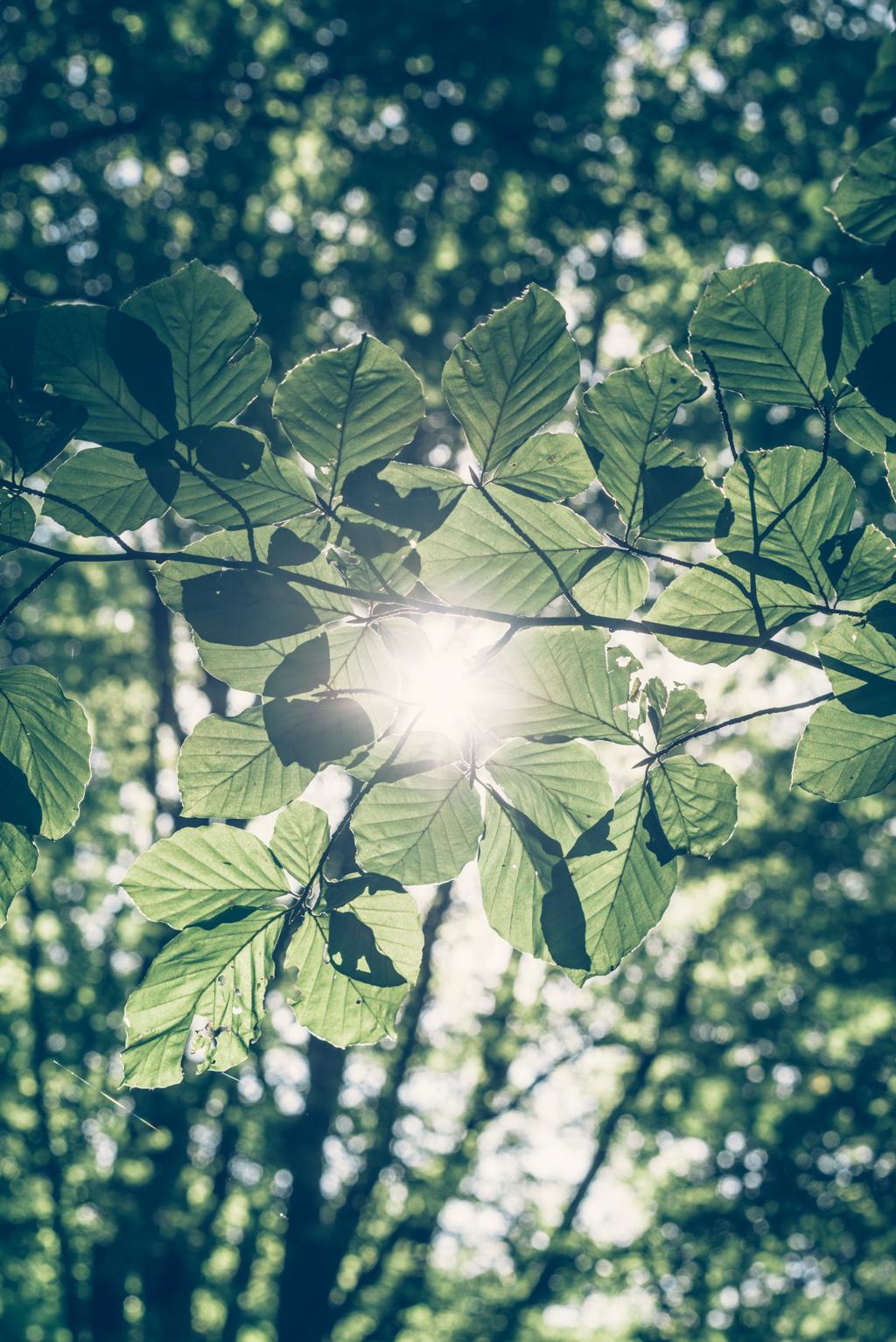 Lovely_Life_KatrinBaath-01944