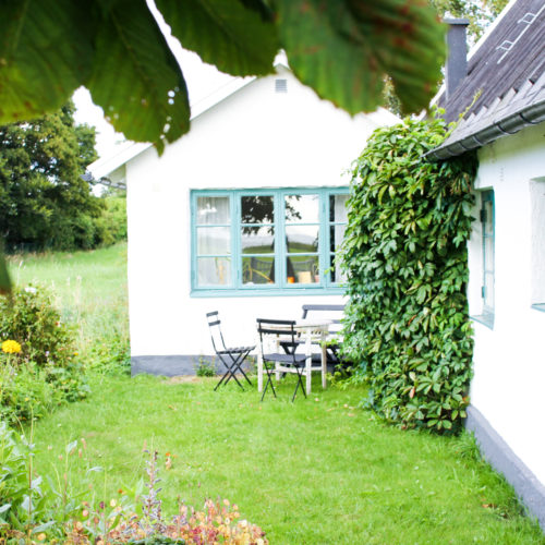 Minnen från en sommardag i Malmö – med besök på Tierps Örtagård och Ängdala Trädgård