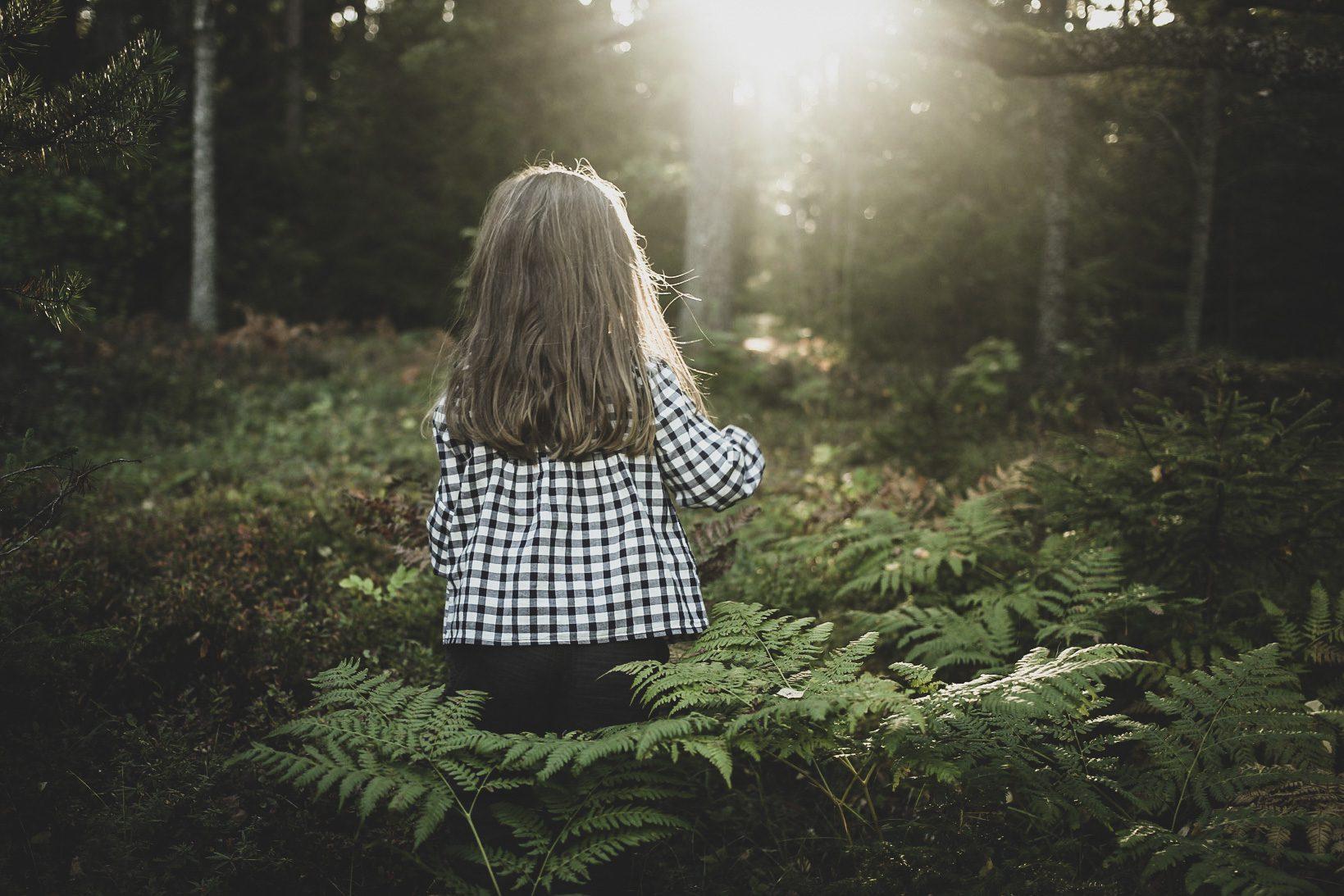 Lovely life södermanland skog
