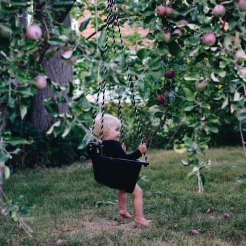 Äppelkindad kardemummabulle