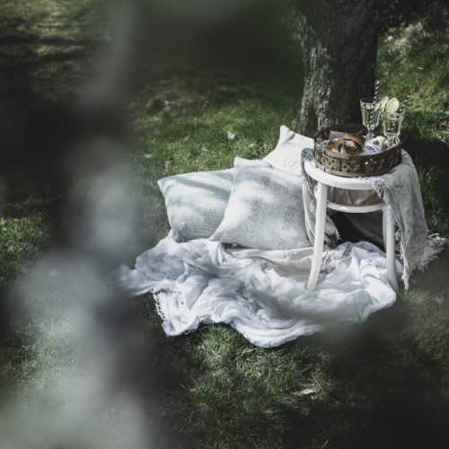 Fika under blommande träd