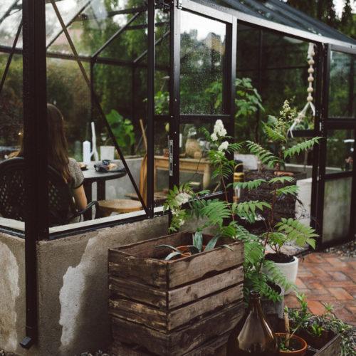 Pernillas växthus
