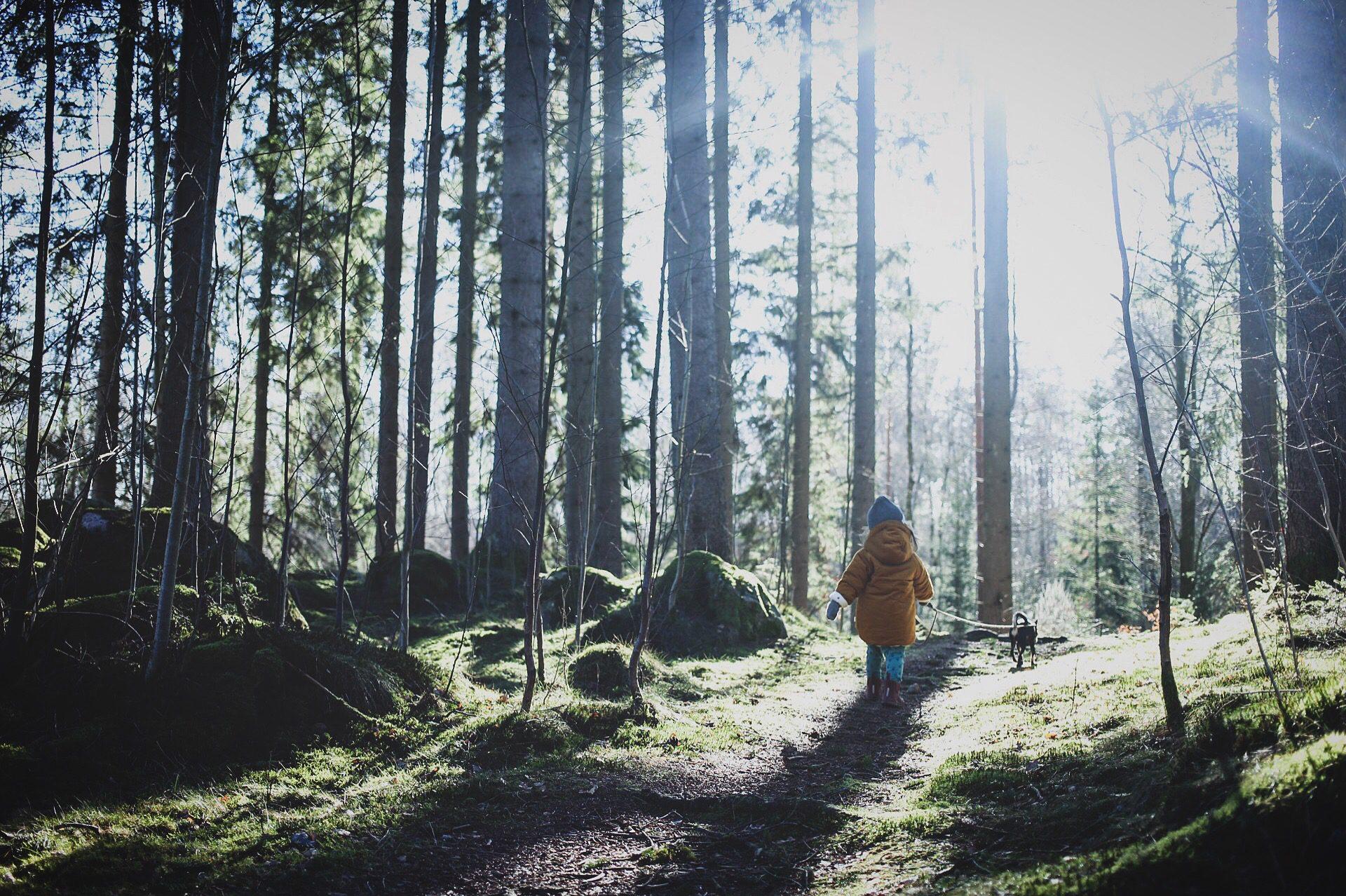 lovely life skog