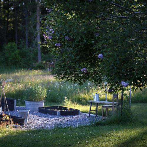 Ett eget trädgårdsland