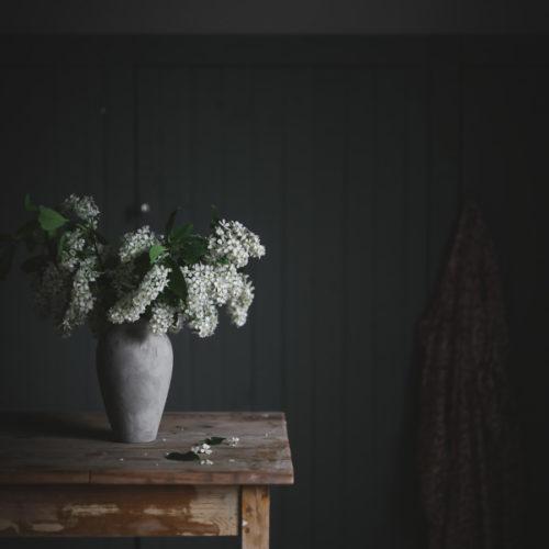 Så blommar häggen