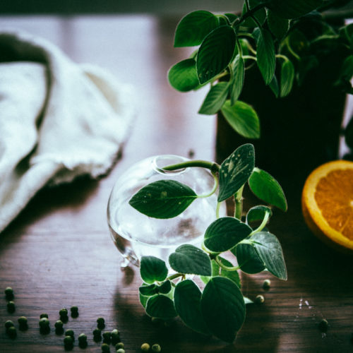 lax med grönpeppar & apelsin