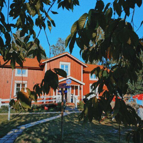 Mina 5 favoritutflykter i Umeå (och runt omkring)