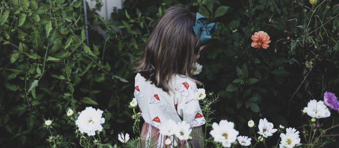 lovely life blommor trädgård