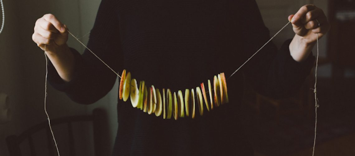 Dried apples by Babes in Boyland