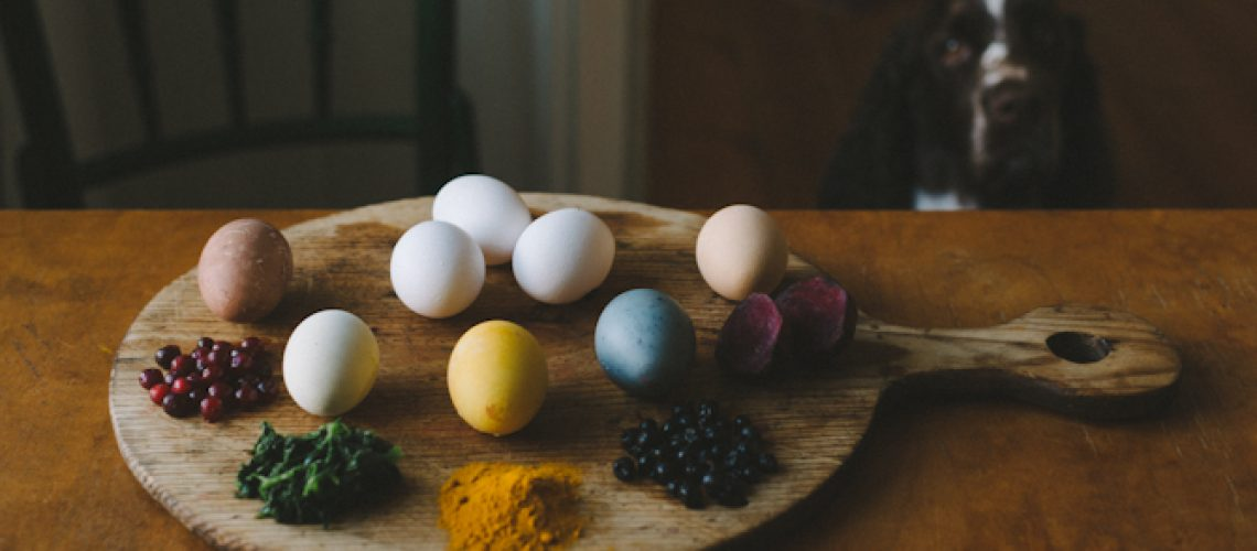 Naturally dyed Easter Eggs by Babes in Boyland